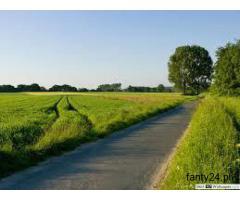 Ziemię rolną sprzedam lub wydzierżawię
